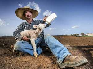 BACK THE BUSH: A deep dive into drought territory