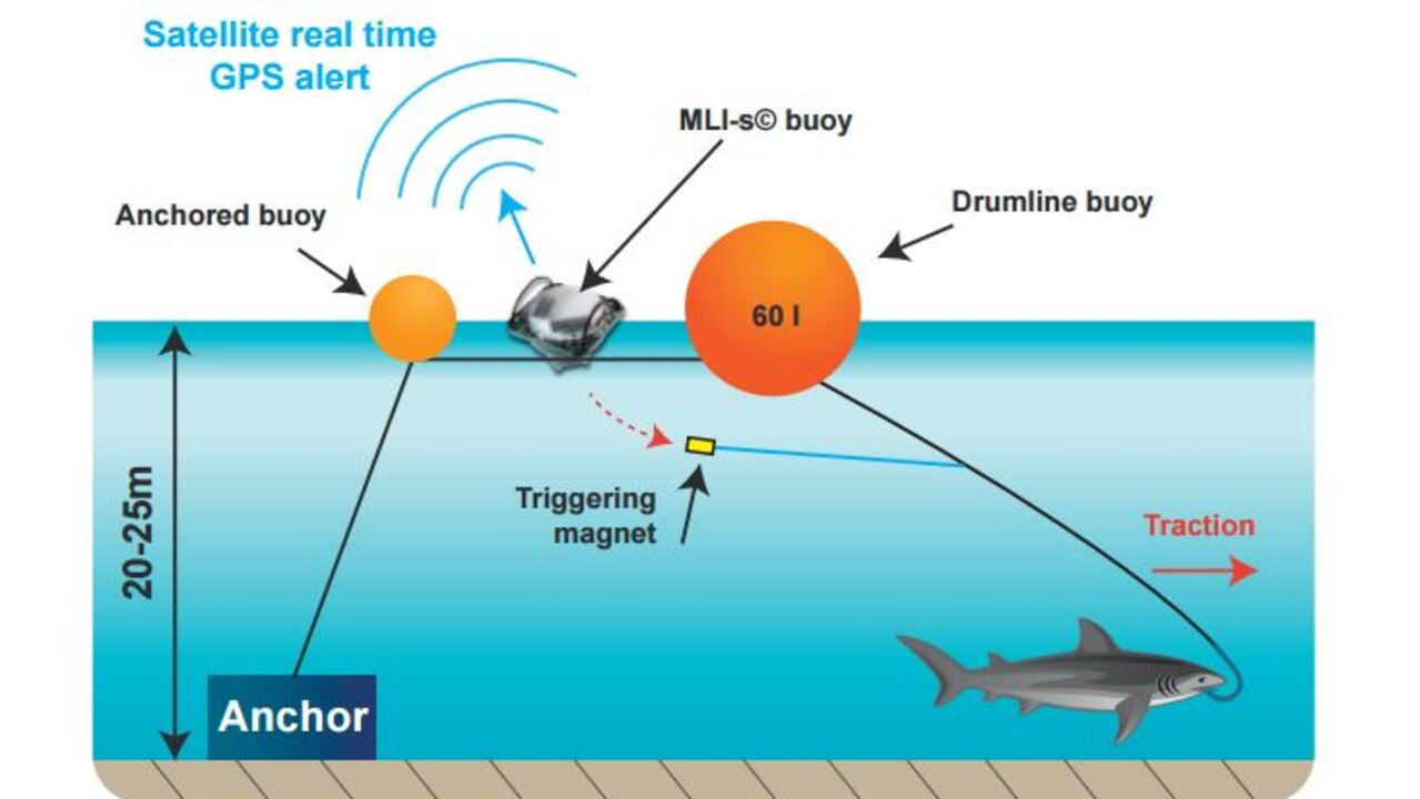 "Diagram: The Catch-A-Live System, Smart Drum Line. A ""classic"" drum line consists of an anchored fishing gear, with a big floating buoy (the ""drum"") at the surface and a baited hook attached to the fishing line. In order to attract sharks at short distances, the hooks are baited with big but low fat fish (milkfish, mullet…). The drumline becomes ""smart"" as soon as it is equipped with the Catch-A-"