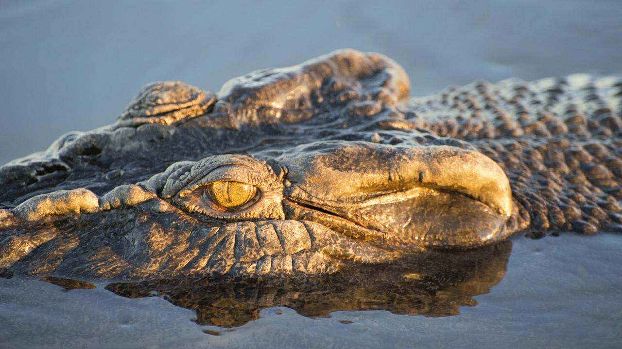 Two men who were stranded in the Robinson River overnight after their boat sank said they were very concerned by a number of crocodiles nearby. Picture: Shaana McNaught