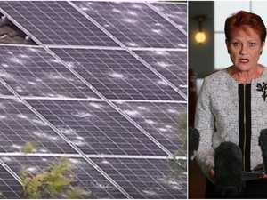 Hanson slams Greens over hail-damaged solar panels