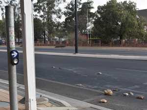Scattered animal carcasses shutdown Warrego Hwy