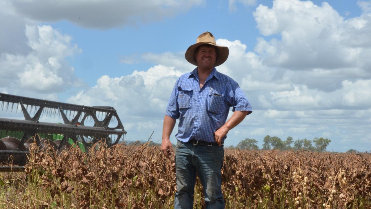 CHARGED: Mondure crop farmer Wayne Green will face Brisbane Magistrates Court. Photo: File