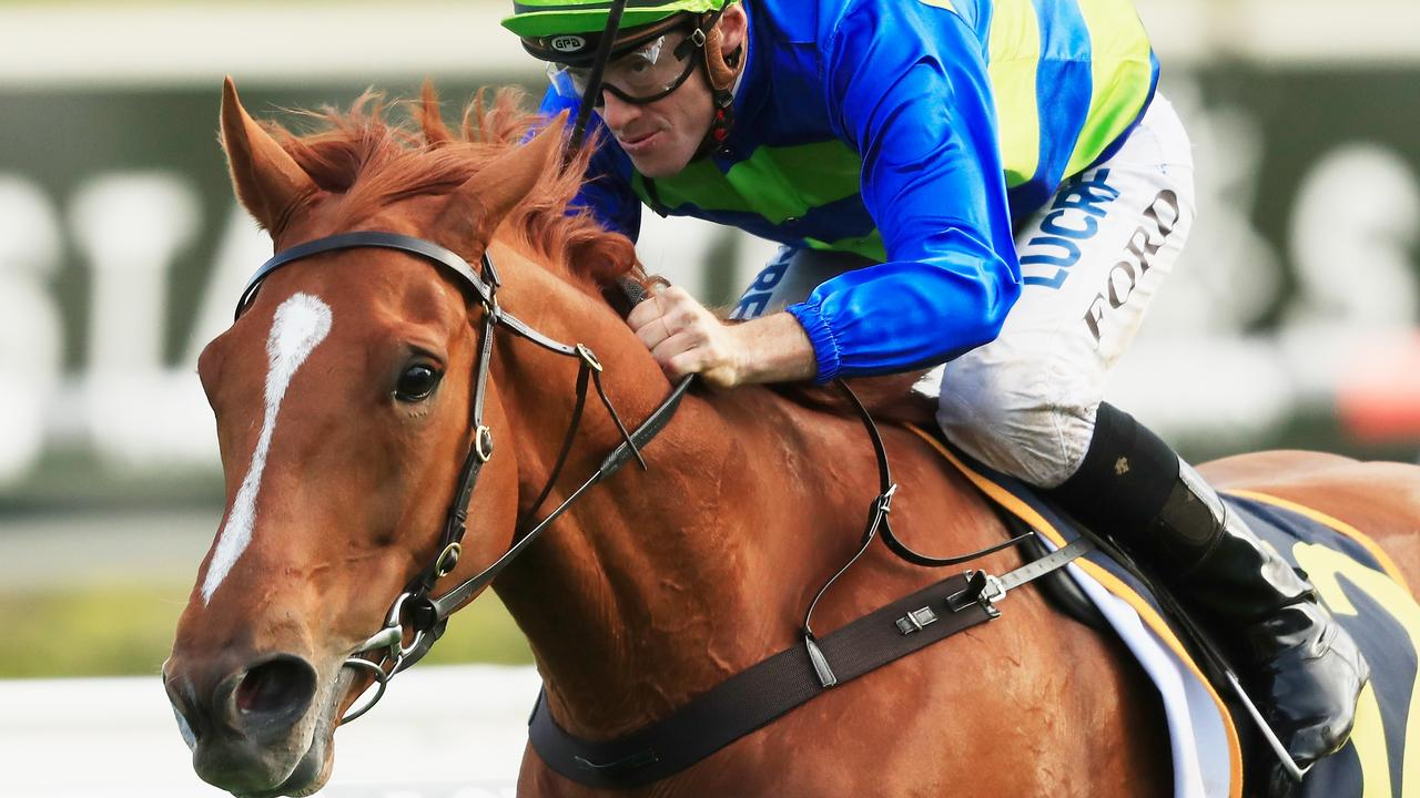 Jay Ford and Big Blue win the St Leger Stakes (2600m) at Royal Randwick on October 13. Picture: Mark Evans/Getty Images