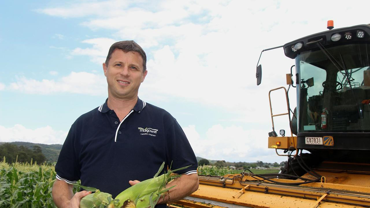 GET RID OF IT: Mulgowie Farming Company CEO Fabian Carniel has backed calls by industry body AUSVEG for the Federal Government to repeal its Backpacker Tax, after a court decision found it couldn't be applied to certain nationalities due to international tax agreements.
