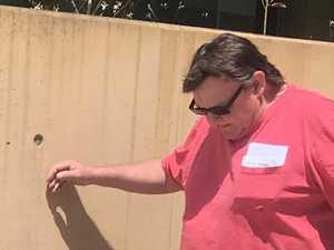 Peeping cops spot pot in plant pots over backyard fence