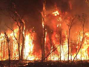 Dump fees waived for bushfire victims