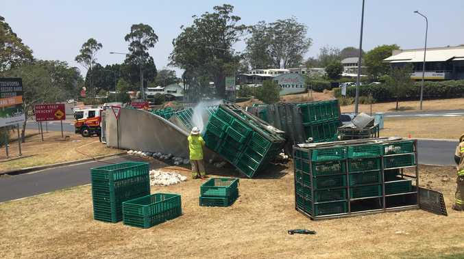 Chickens on the loose in the Toowoomba after crash