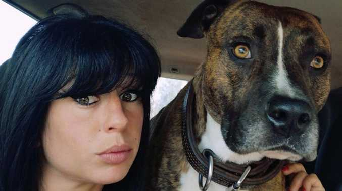 Pregnant woman 'killed by dogs' in France