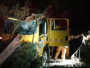 'Massive fright': Close call for fireys after tree fall