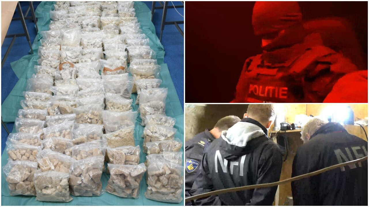 The shipment of MDMA was big enough to make seven million ecstasy pills.