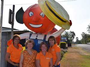 Orange Festival has freshly squeezed committee