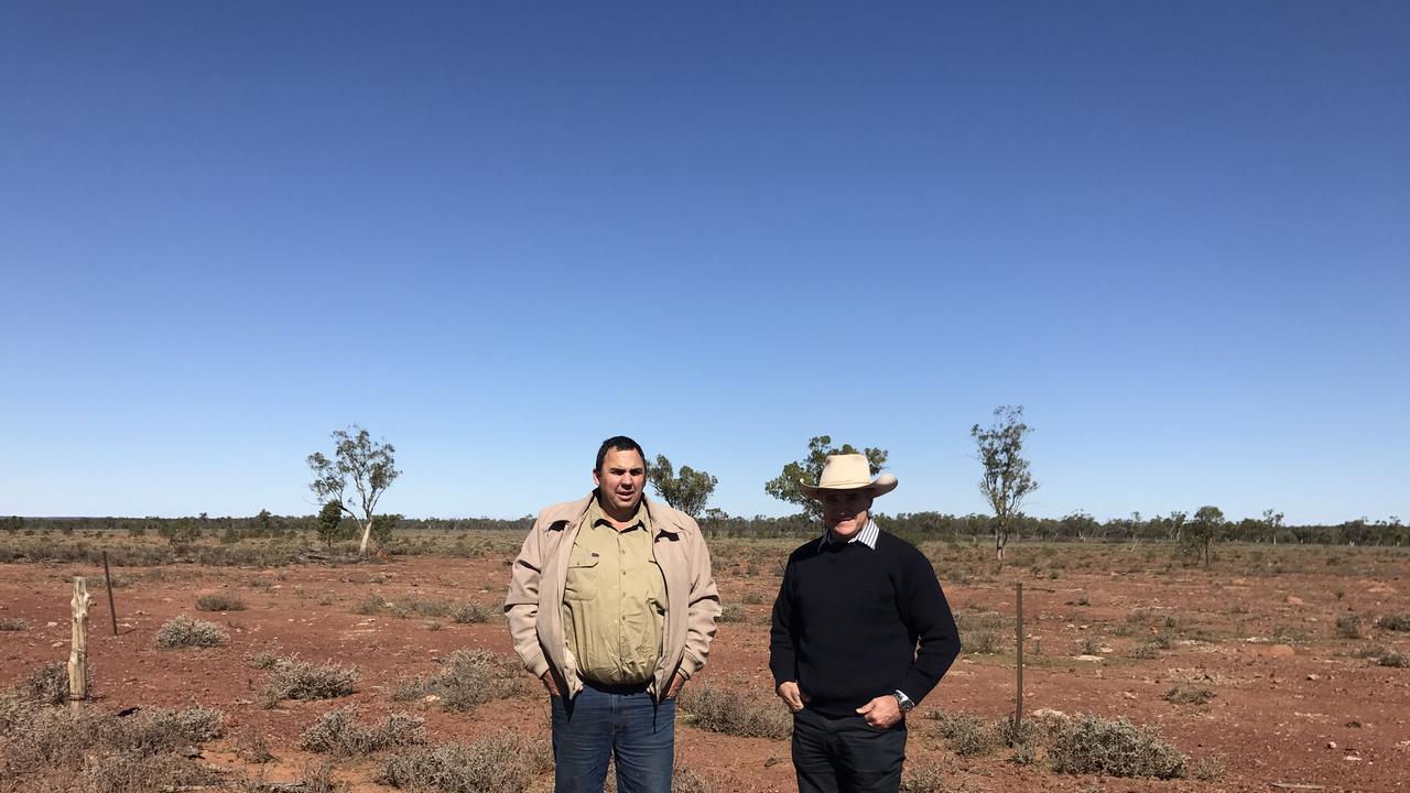 MULGA LIFELINE: Robbie Katter MP with Charleville grazier Rick Gurnett inspecting mulga on his property.