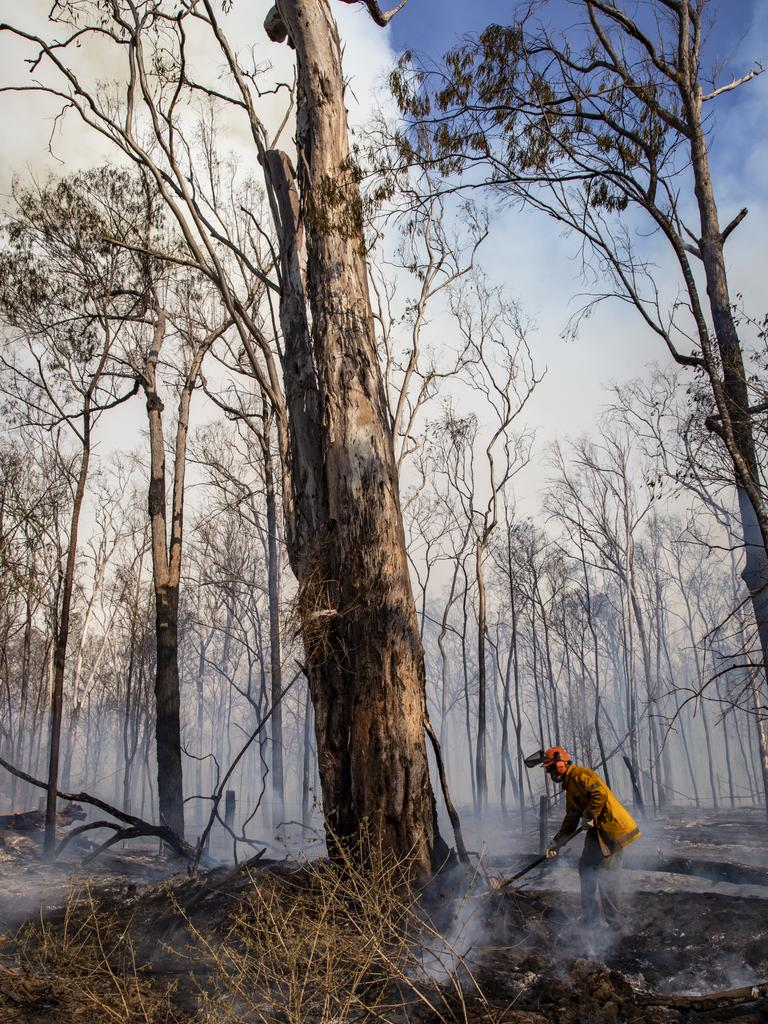 QFES photos from inside the bushfire zone at Pechey