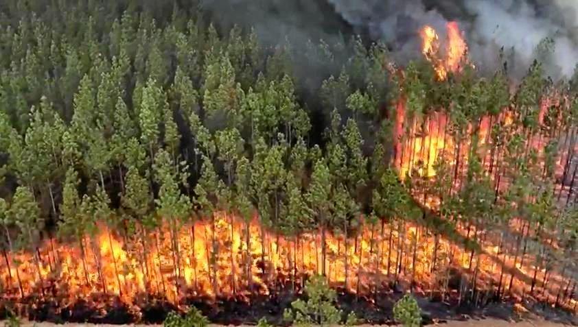 Footage of the Myall Creek fire, Bora Ridge on Thursday.
