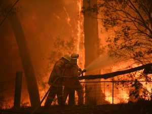 NSW Government launches inquiry into deadly bushfire season