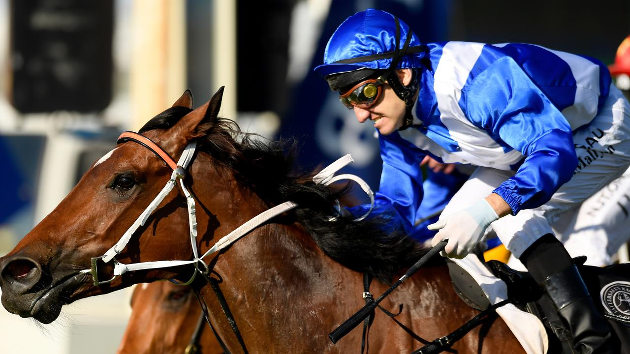 Miss Fabulass is being prepared for a wildcard entry to Magic Millions day. Picture: AAP Image/Albert Perez