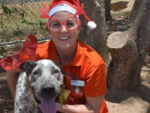 Where you can get your pet's photo taken with Santa