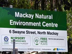 North Mackay crime spree