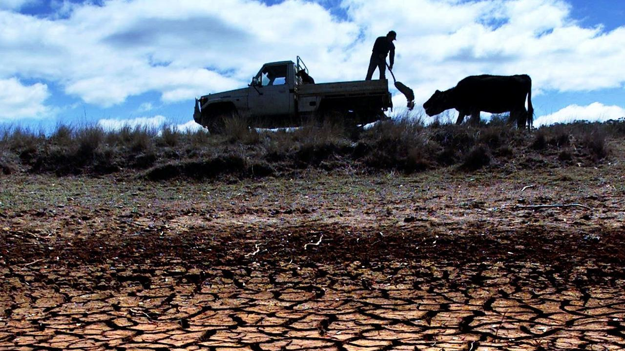 DRY TIMES: With no access to town water Williams said he has to rely on rain to keep his animals alive. Pic:QNP Townsville - Campbell Glenn