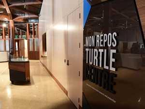 Complex challenges of turtle centre build revealed