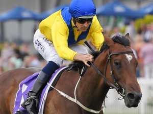 Golden Slipper glow: Muntaseera a cut above the rest