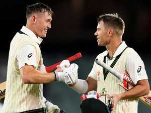 Warner climbs legends podium after epic innings