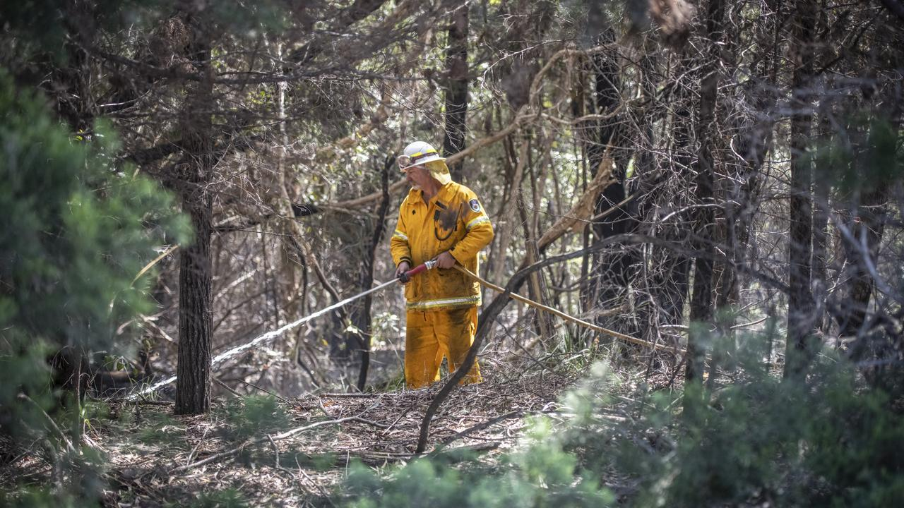 EVENT TO SAY THANK YOU: An RFS member patrols along the Angourie Road roadside as the clean-up after massive bushfires continues across Northern NSW.