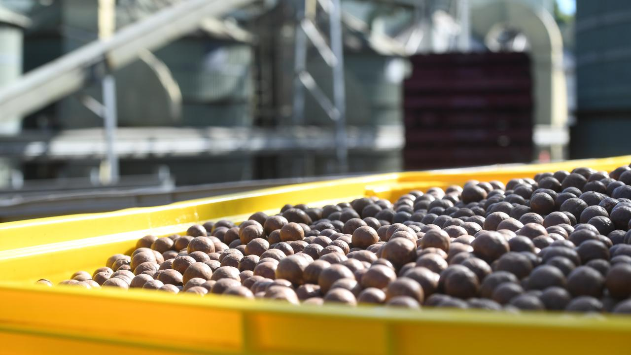 Australian macadamia growers have produced a higher than predicted 2019 crop of 43,500 tonnes in-shell.