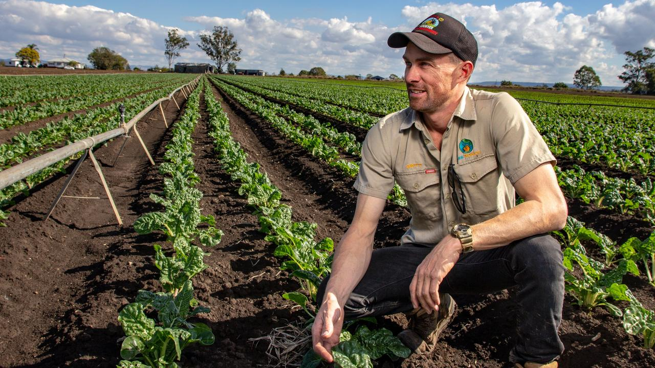 COST OF DROUGHT: Glenore Grove vegetable farmer Brett Simon vegetable market prices hadn't risen to cover the increased costs of production, eating into farms profits. Picture: Dominic Elsome