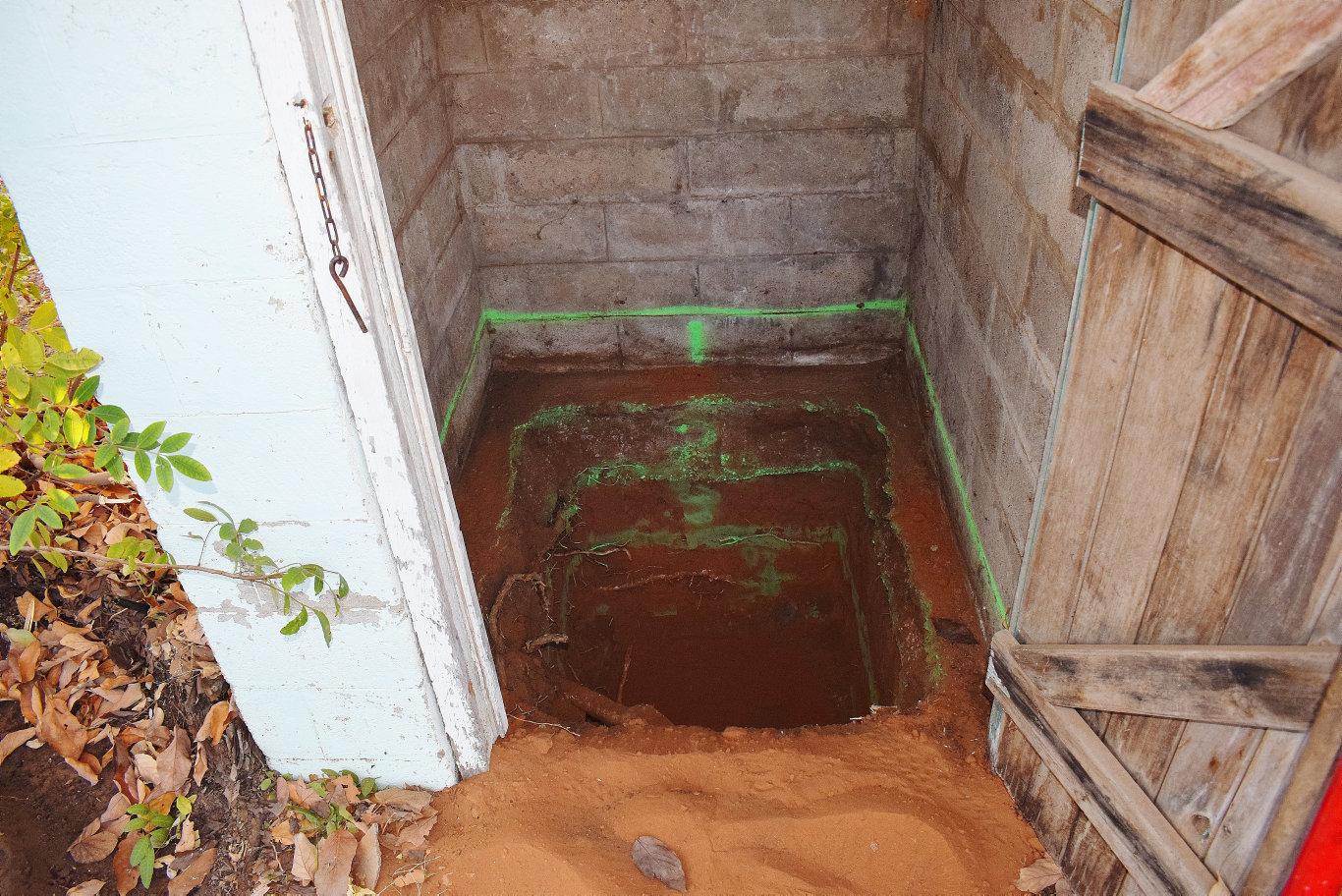 Chinchilla backyard investigation