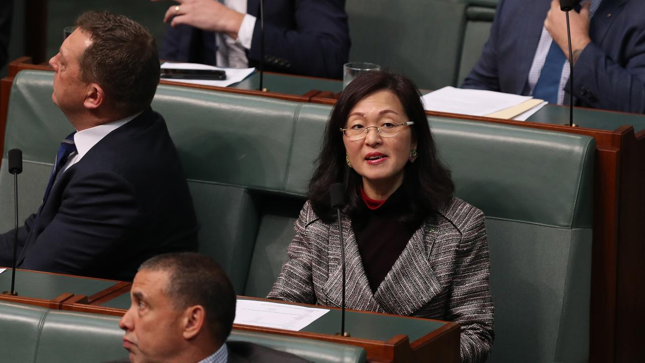 Gladys Liu has attracted continued controversy during her short time in parliament. Picture: Kym Smith