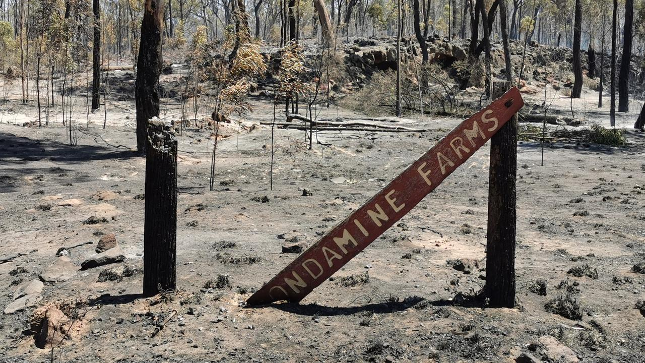 Julie Cole took this photo while trapped behind fire containment lines.