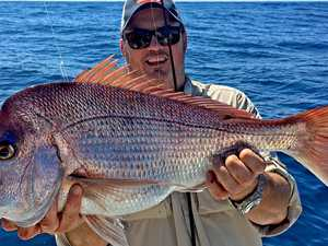 Reef trips that have anglers reaping the rewards