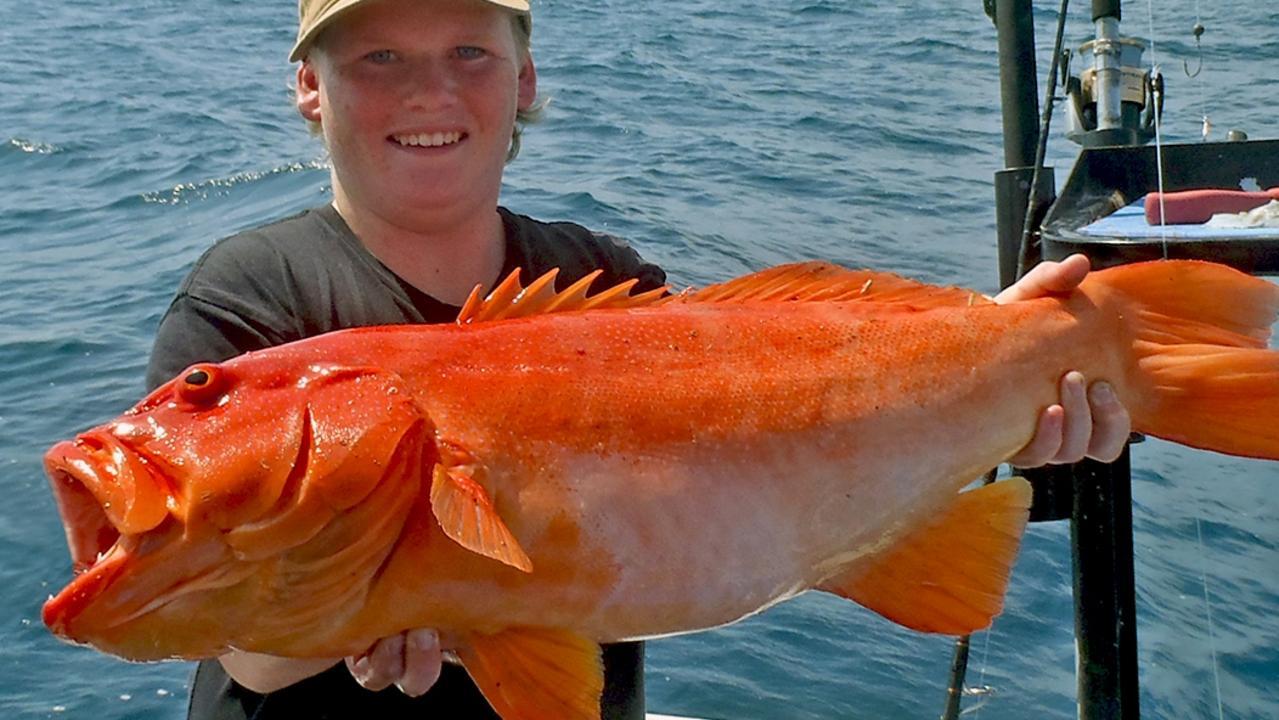 Gotcha - Ollie Gettinby with a Sunshine Reef coral trout. Photo: www.fishingnoosa.com.au