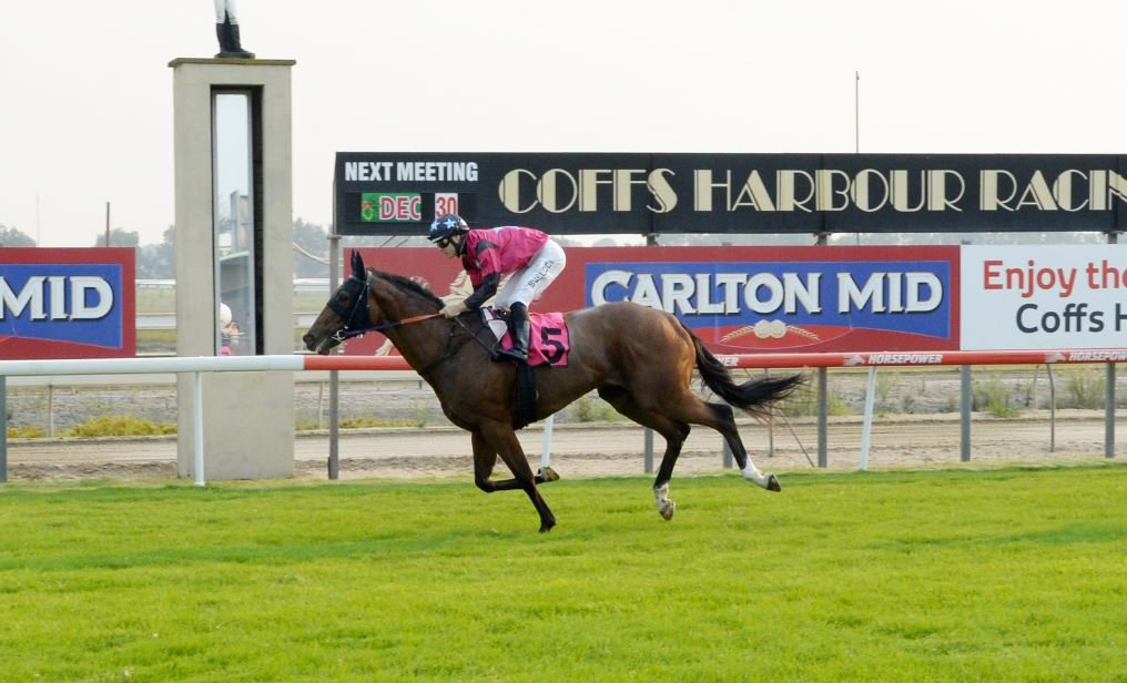 SHE'S BACK: Alternative Facts overcame a career threatening condition to win on Thursday.