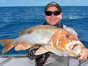 FISHING REPORT: Coral trout legal but snub fishermen's bait