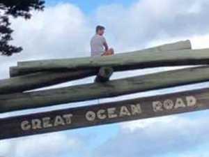 'Flog on a log's' disrespectful memorial act