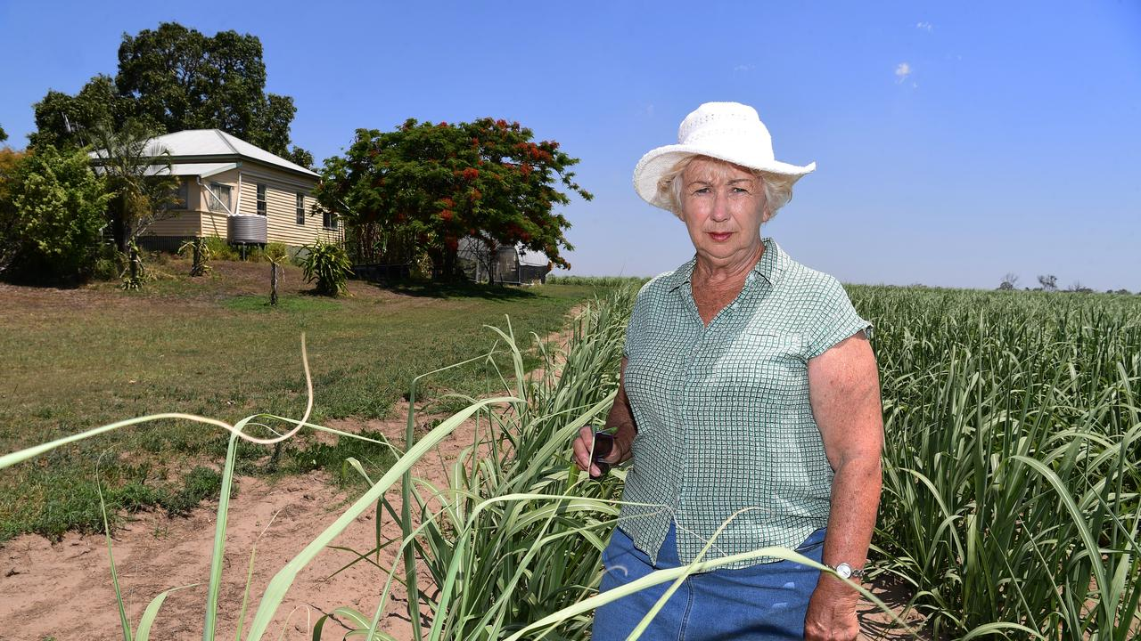 Dianne Bush on the family farm near Avondale. Picture: Mike Knott
