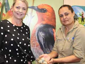 New $6.5m centre puts spotlight on migratory birds