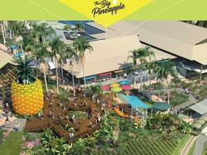 Big Pineapple master plan looks sweet
