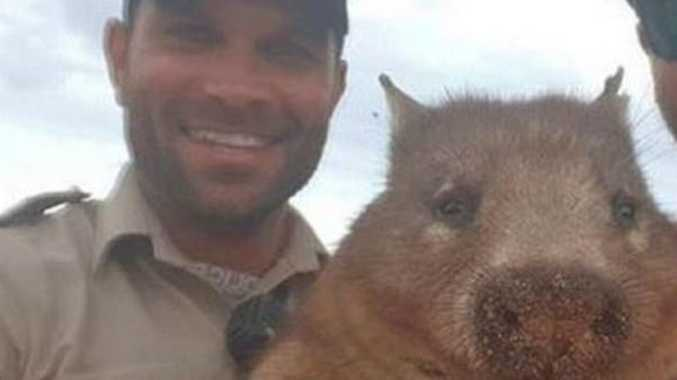 Public fury after wombat-killing cop keeps job