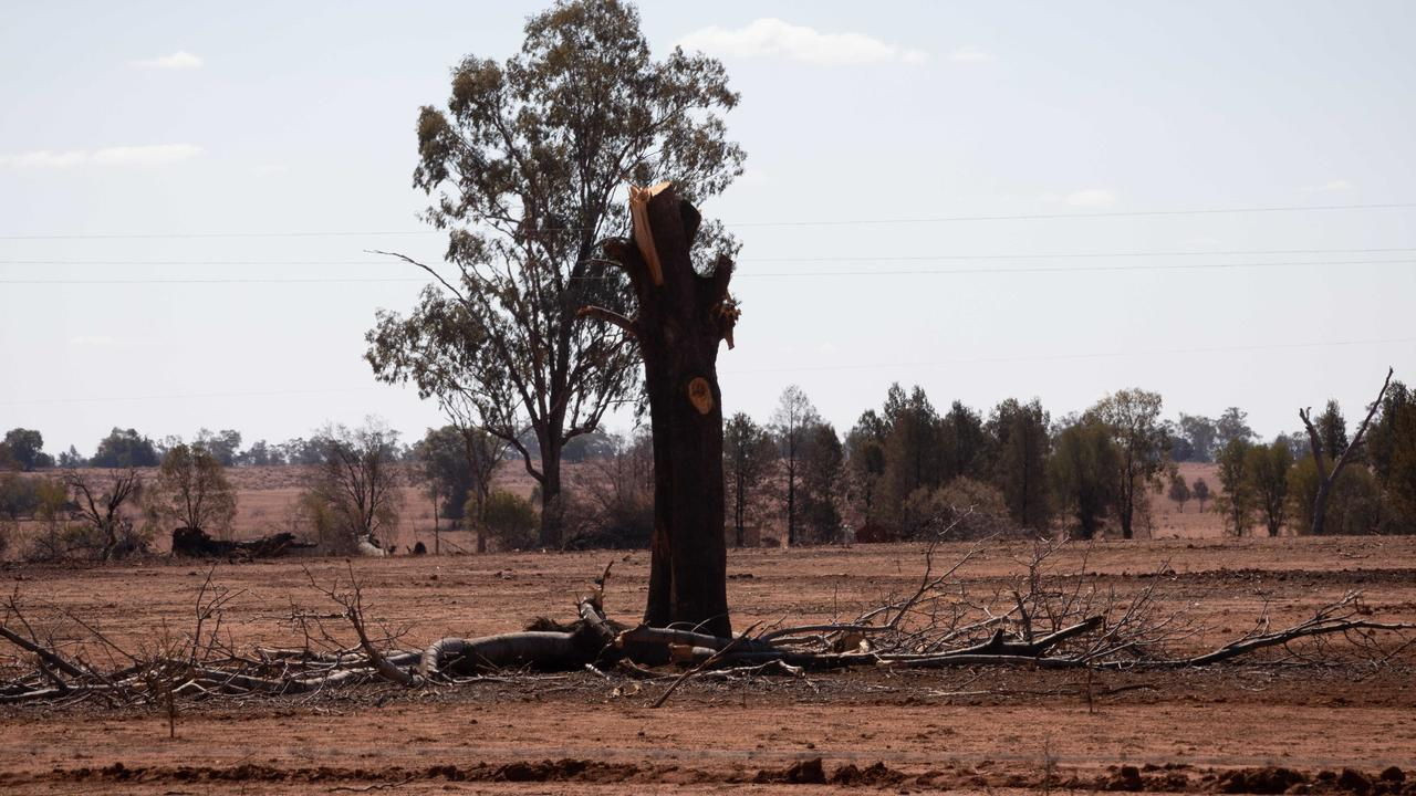 NSW farmers are continuing to battle the worst drought on record.