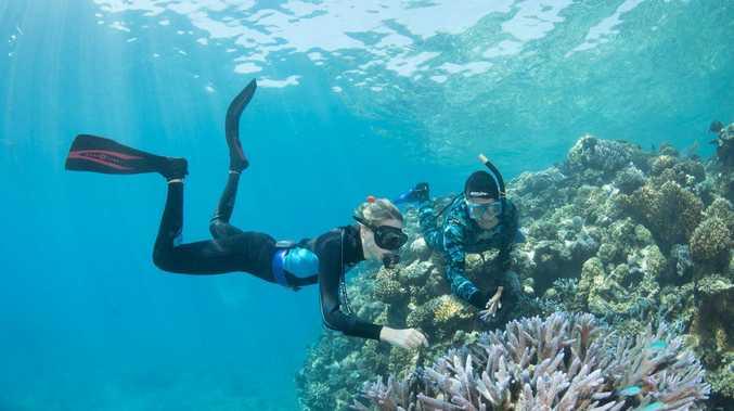 Tourism provides boost to economy