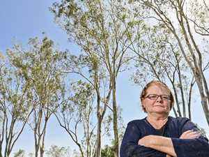 Council dispute over home among the gum trees