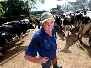 'Ghost towns' predicted if dairy fails
