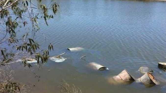 Toxic drums killed marine life near Yeppoon