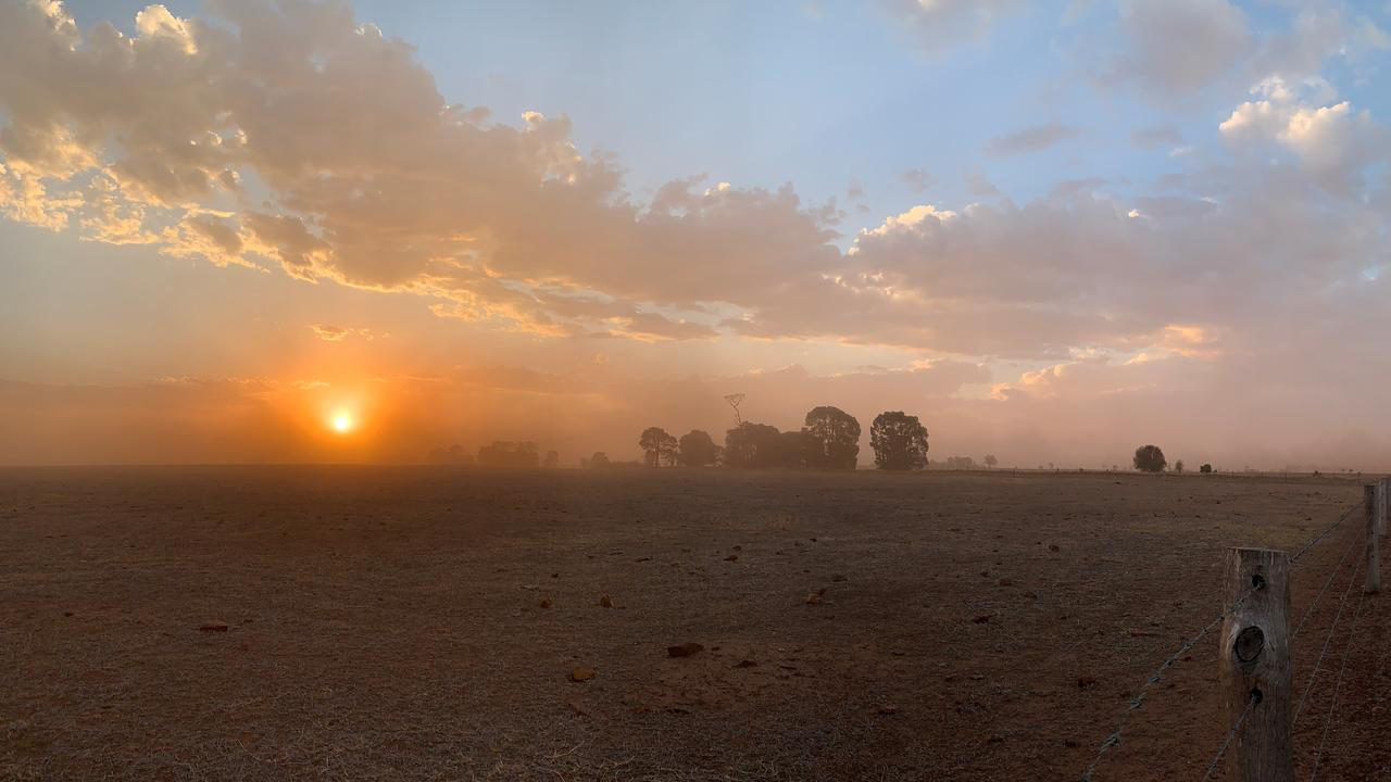 DUSTY: Dusty conditions at sunset just outside of Jandowae. Pic: Kate McCormack.