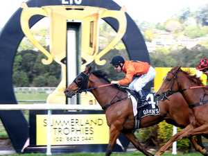 Will Lismore get another public holiday for the Cup?
