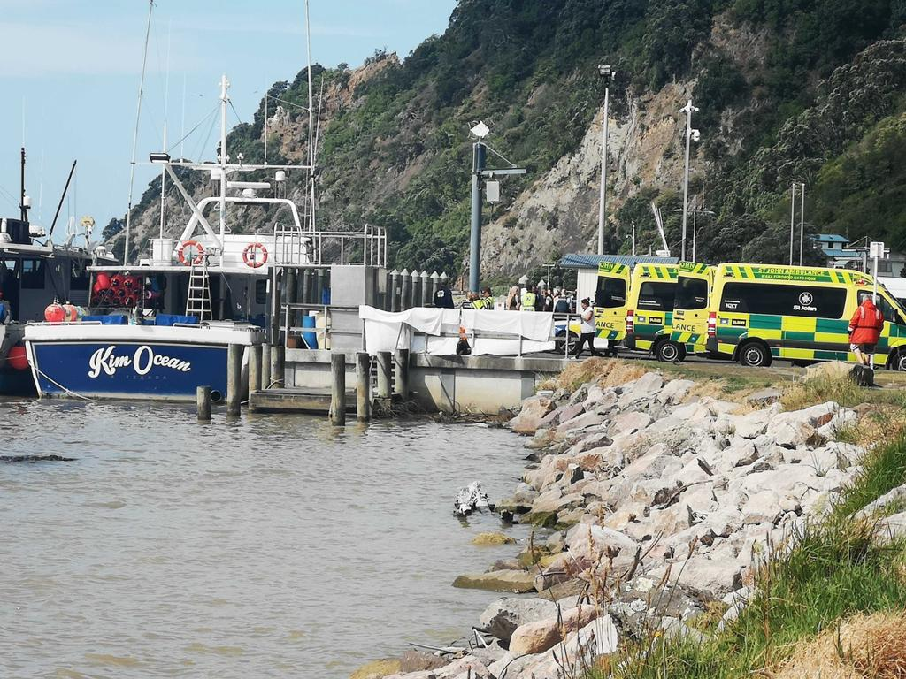 People from the White Island Island volcanic explosion are ferried into waiting ambulances at Whakatane Wharf. Picture: New Zealand Herald