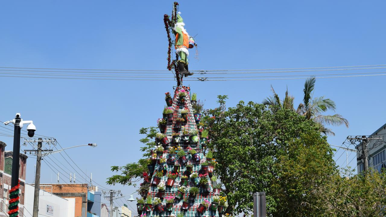 FESTIVE: Lismore City Council's 2019 recycled Christmas tree has been unveiled. The 7-metre CBD festive sculpture is made from more than 300 potted plants.
